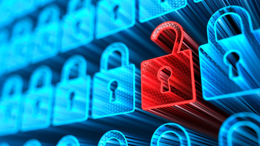 Kinds of Security Risks for Organisations Implementing ERP